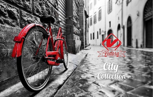 VEDORA CITY BIKE