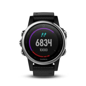 Garmin fénix 5S Silver + Black Band